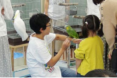「鳥さんたちの楽しい講演会」が開催されました!!
