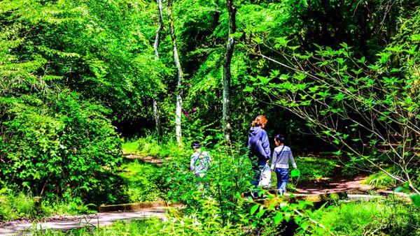 森林浴で佐世保探訪