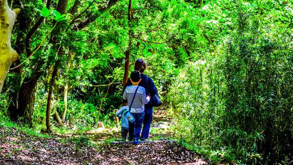 森林浴も、海遊びも、景観も、みんな親子で楽しみたい!