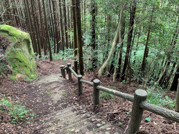 小佐々町でハイキング・森林浴